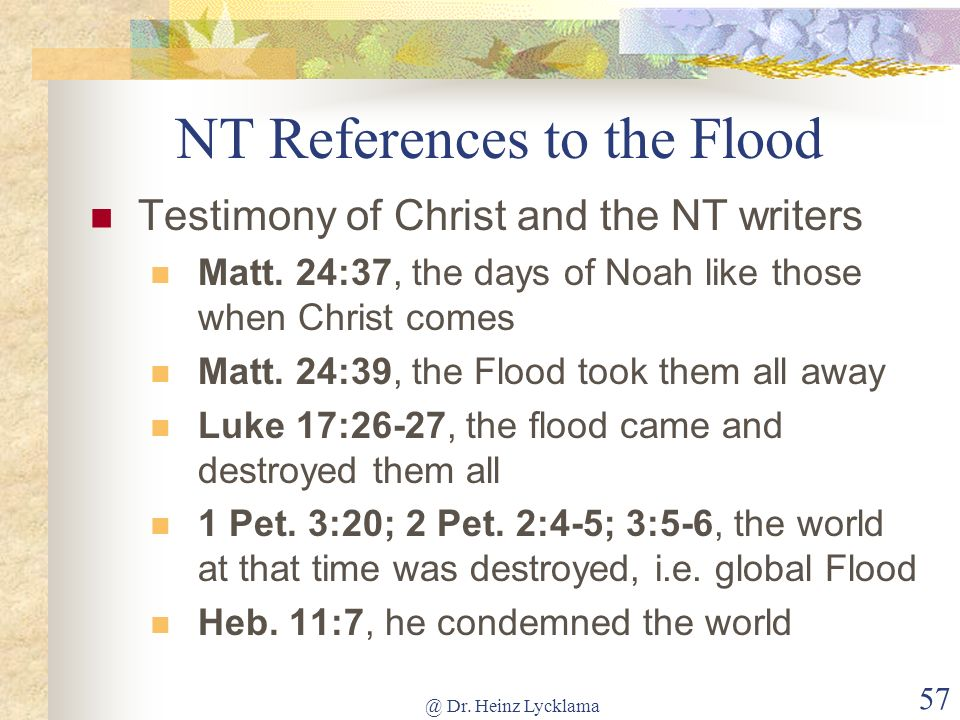 NT References to the Flood