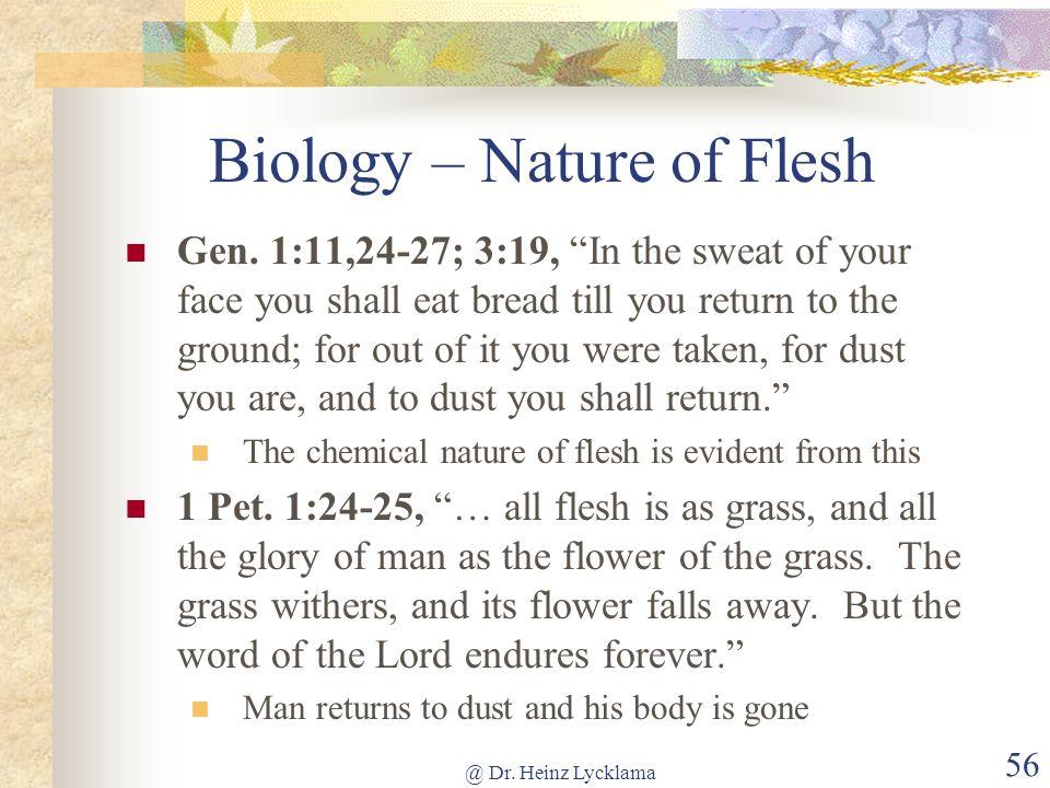 Biology – Nature of Flesh