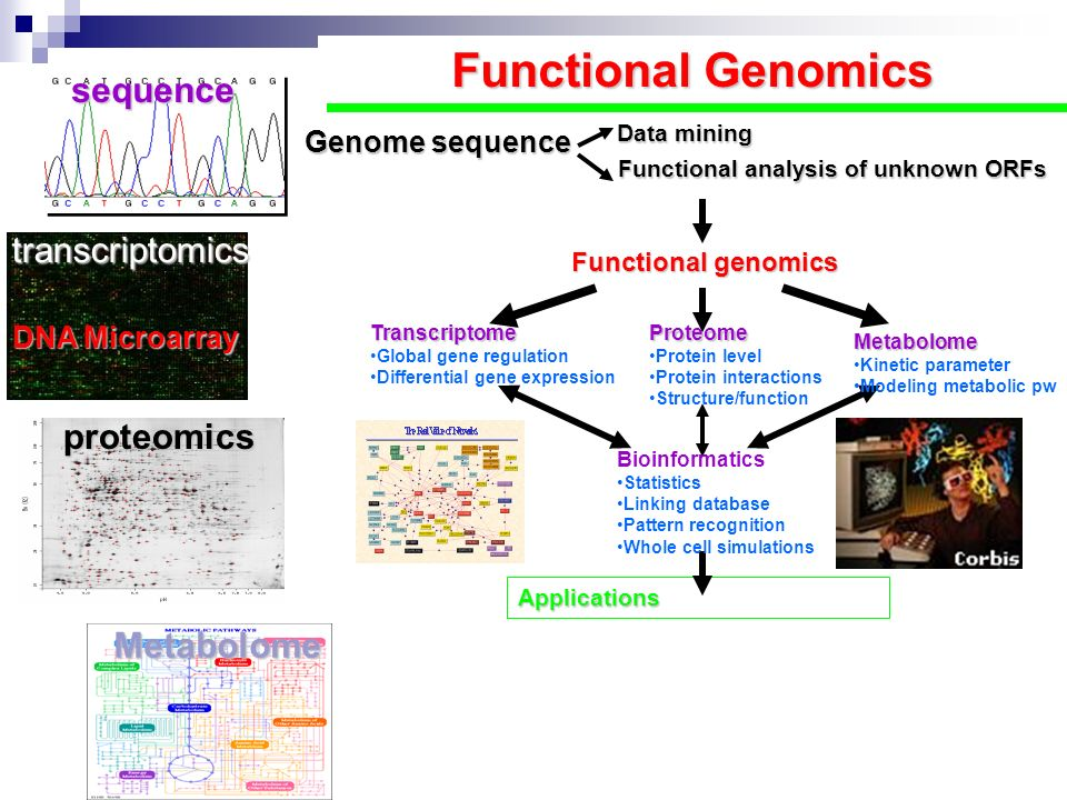 Functional Genomics sequence transcriptomics proteomics