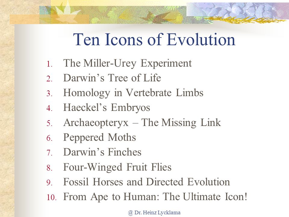 Ten Icons of Evolution The Miller-Urey Experiment