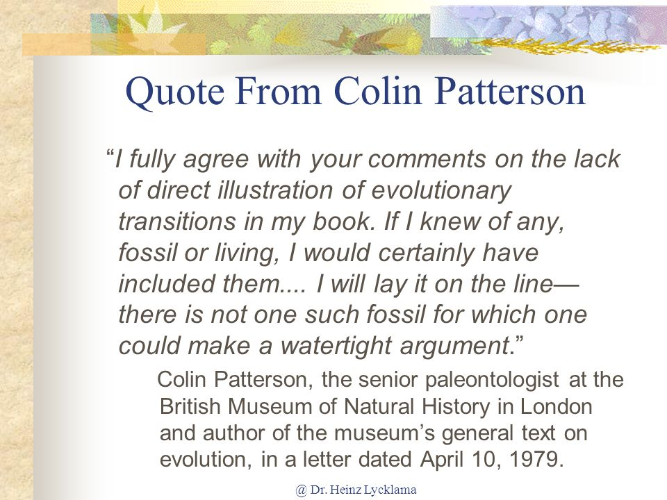 Quote From Colin Patterson