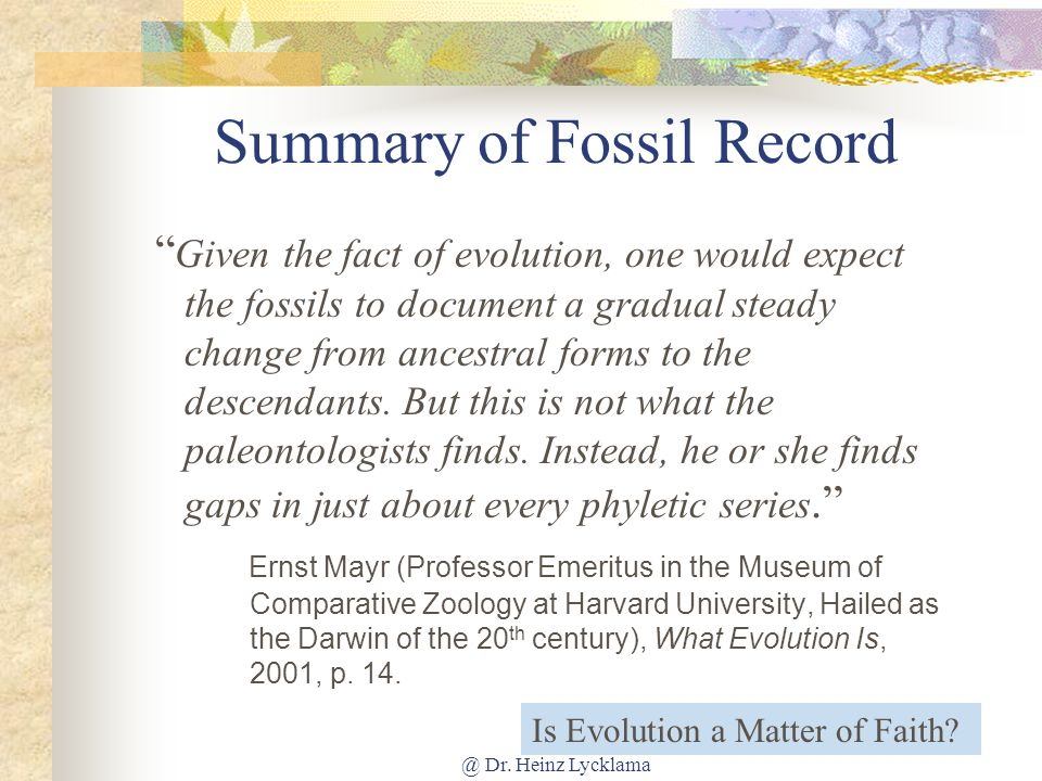 Summary of Fossil Record