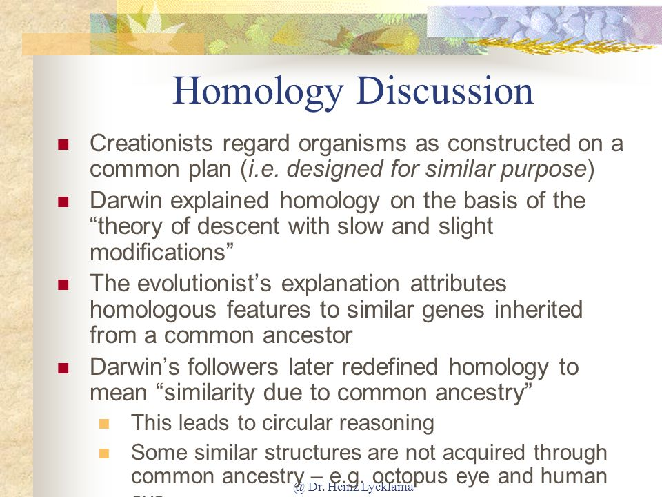 Homology Discussion Creationists regard organisms as constructed on a common plan (i.e. designed for similar purpose)