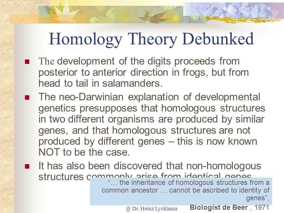 Homology Theory Debunked