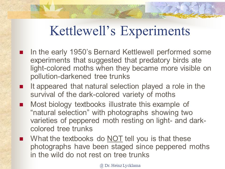 Kettlewell's Experiments