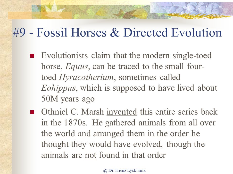 #9 - Fossil Horses & Directed Evolution