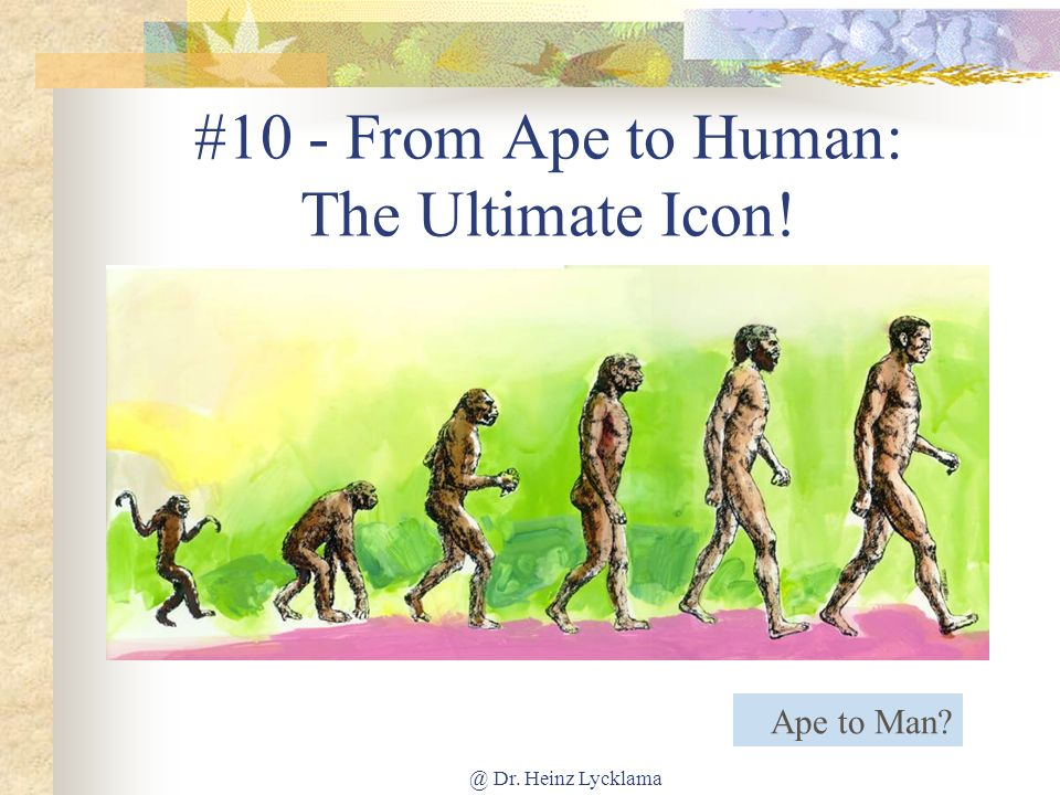 #10 - From Ape to Human: The Ultimate Icon!