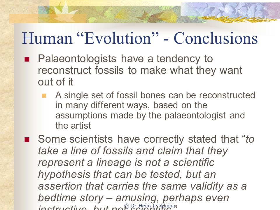 Human Evolution - Conclusions
