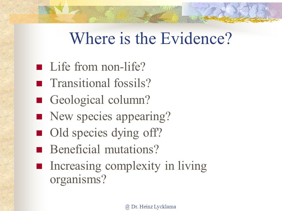 Where is the Evidence Life from non-life Transitional fossils