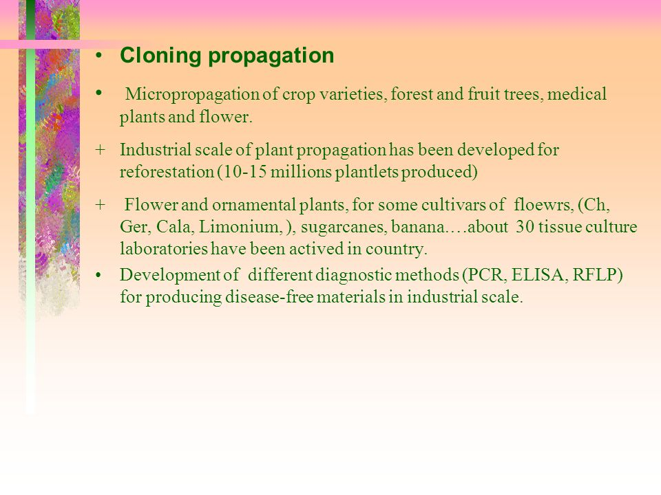 Cloning propagation Micropropagation of crop varieties, forest and fruit trees, medical plants and flower.
