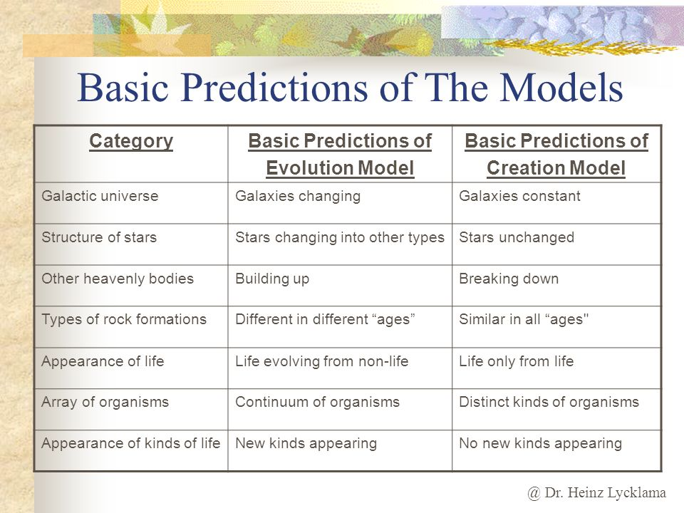 Basic Predictions of The Models