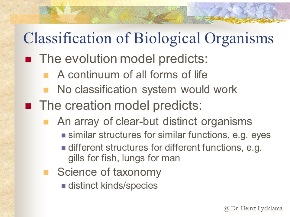 Classification of Biological Organisms