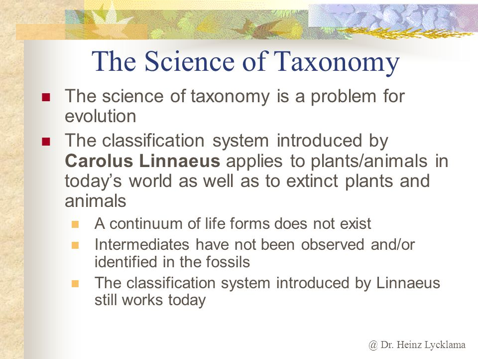 The Science of Taxonomy