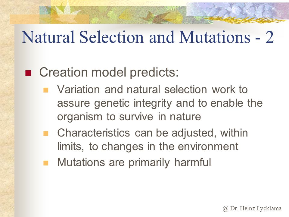 Natural Selection and Mutations - 2