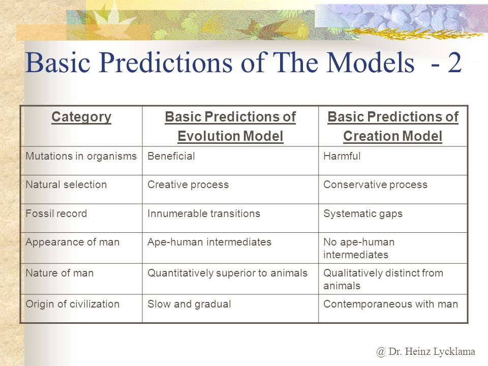 Basic Predictions of The Models - 2