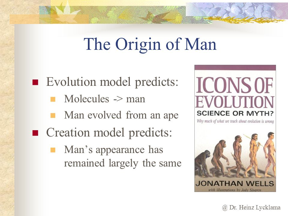 The Origin of Man Evolution model predicts: Creation model predicts: