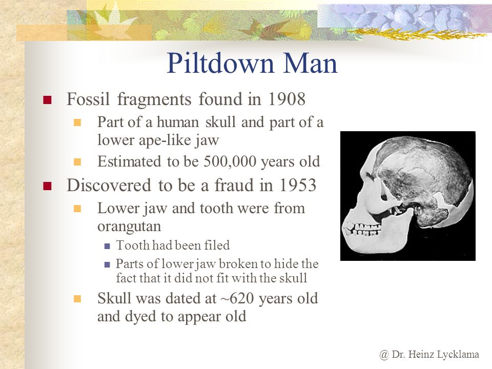 Piltdown Man Fossil fragments found in 1908