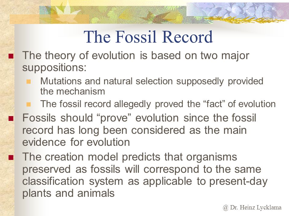 The Fossil Record The theory of evolution is based on two major suppositions: Mutations and natural selection supposedly provided the mechanism.