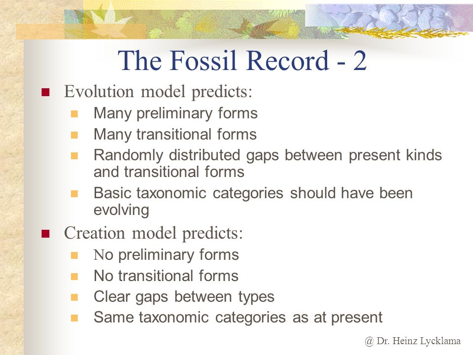The Fossil Record - 2 Evolution model predicts: