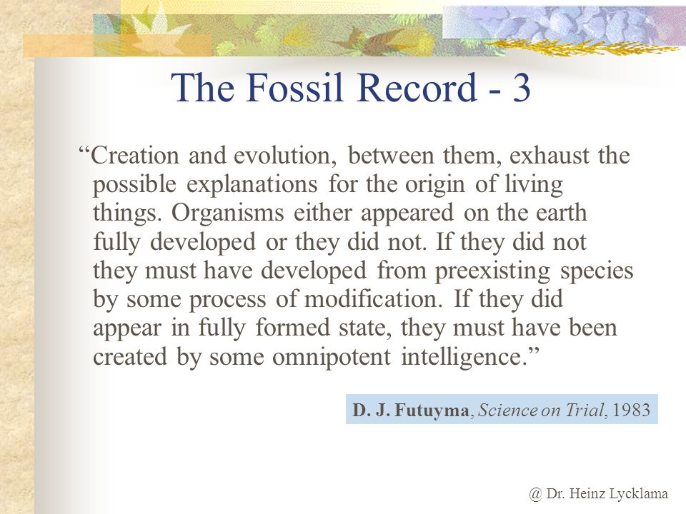 The Fossil Record - 3