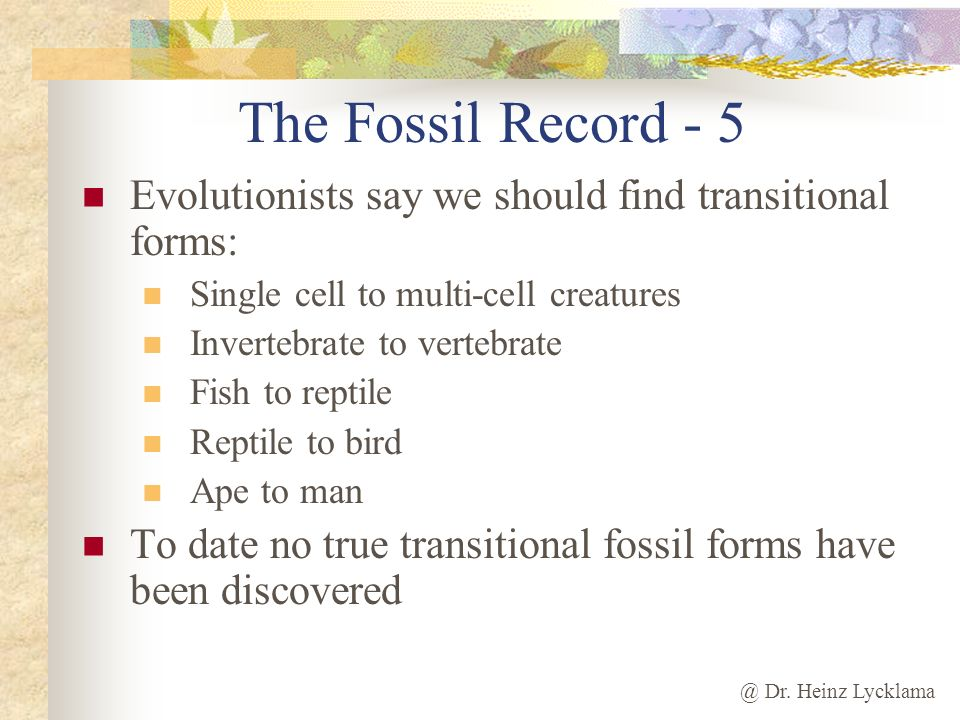 The Fossil Record - 5 Evolutionists say we should find transitional forms: Single cell to multi-cell creatures.