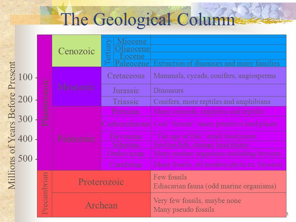 The Geological Column Cenozoic 100 - Mesozoic Phanerozoic