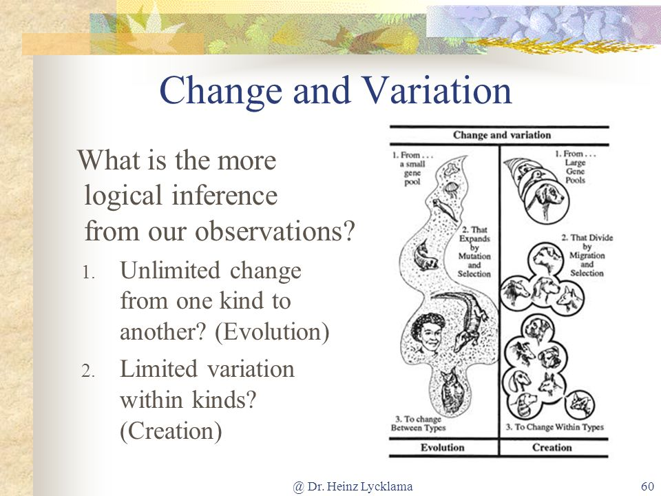 Change and Variation What is the more logical inference from our observations Unlimited change from one kind to another (Evolution)