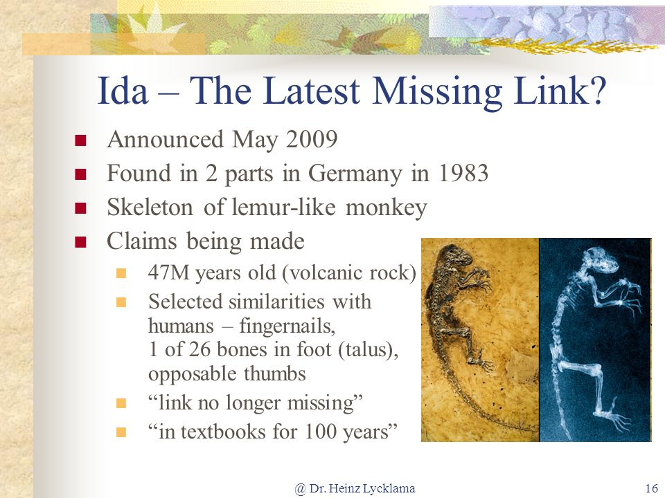 Ida – The Latest Missing Link