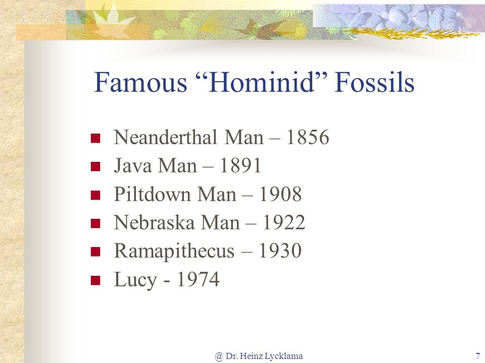 Famous Hominid Fossils