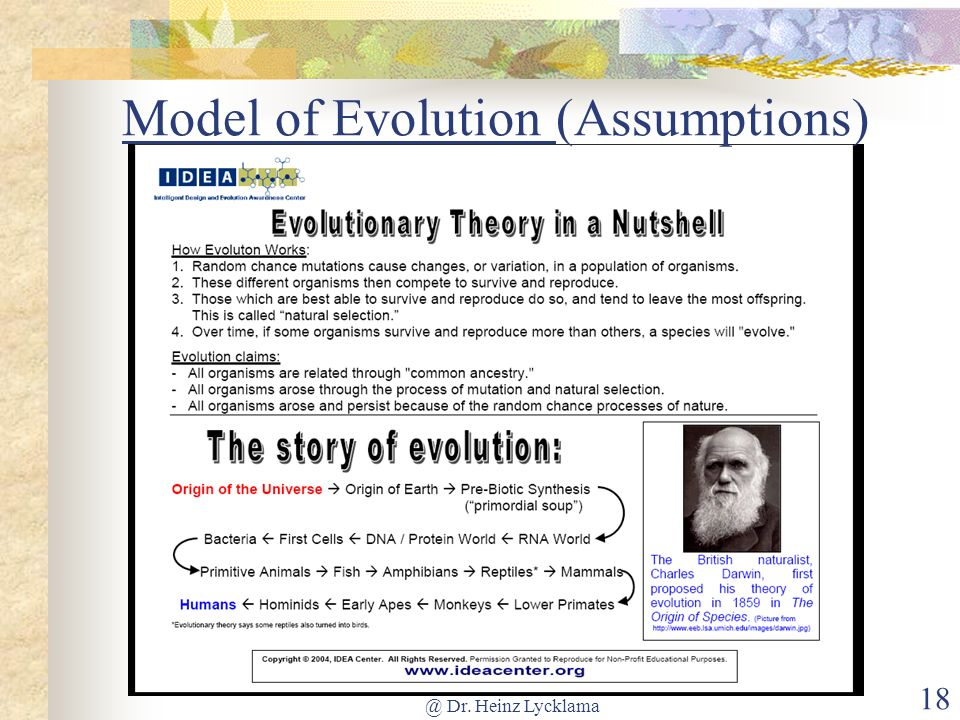Model of Evolution (Assumptions)