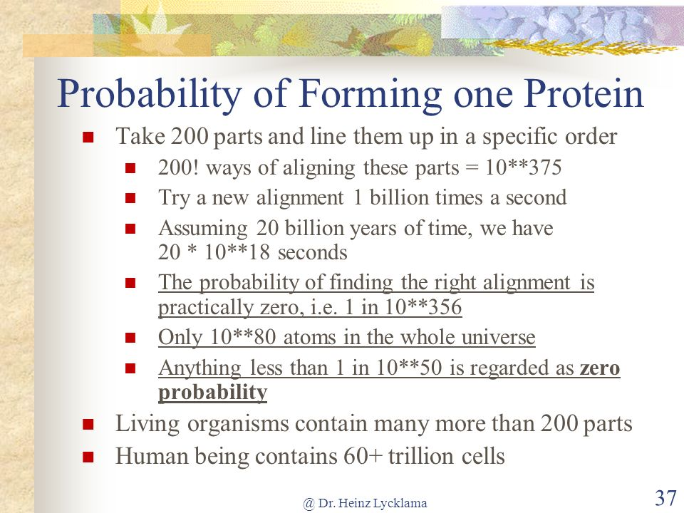 Probability of Forming one Protein