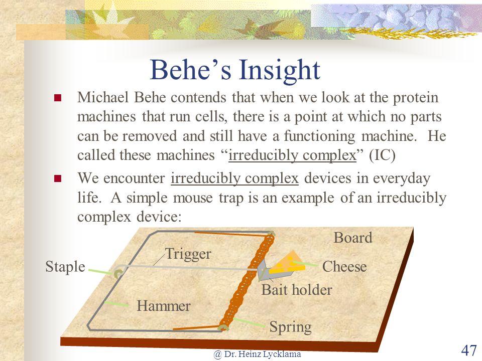 Behe's Insight