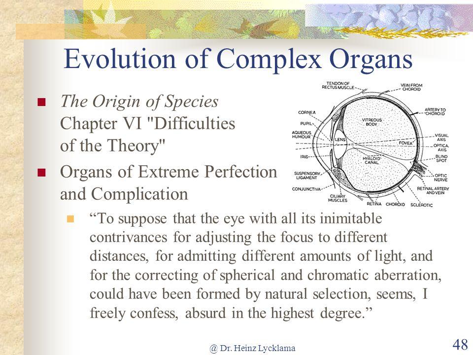 Evolution of Complex Organs