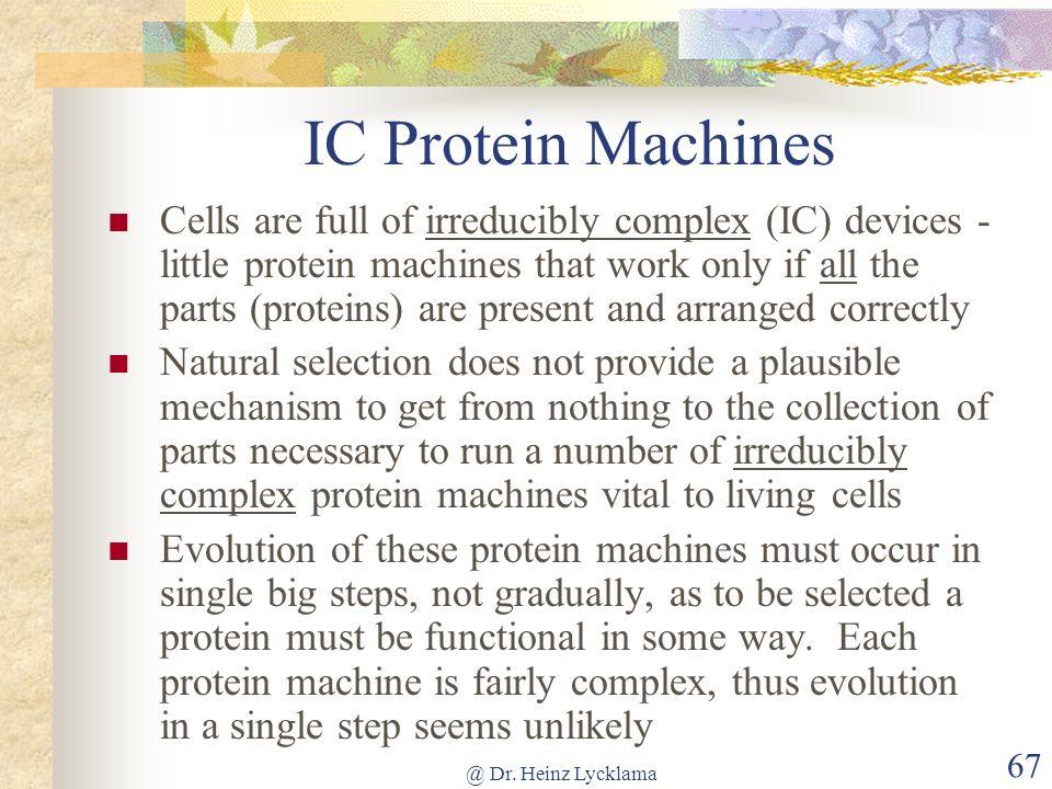 IC Protein Machines