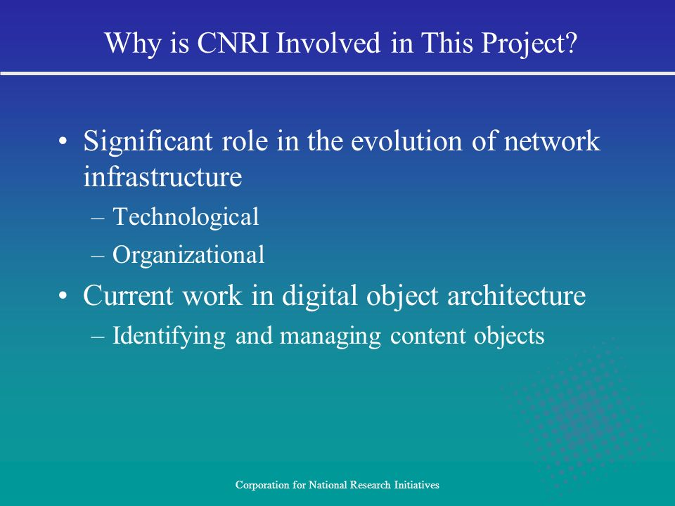 Why is CNRI Involved in This Project