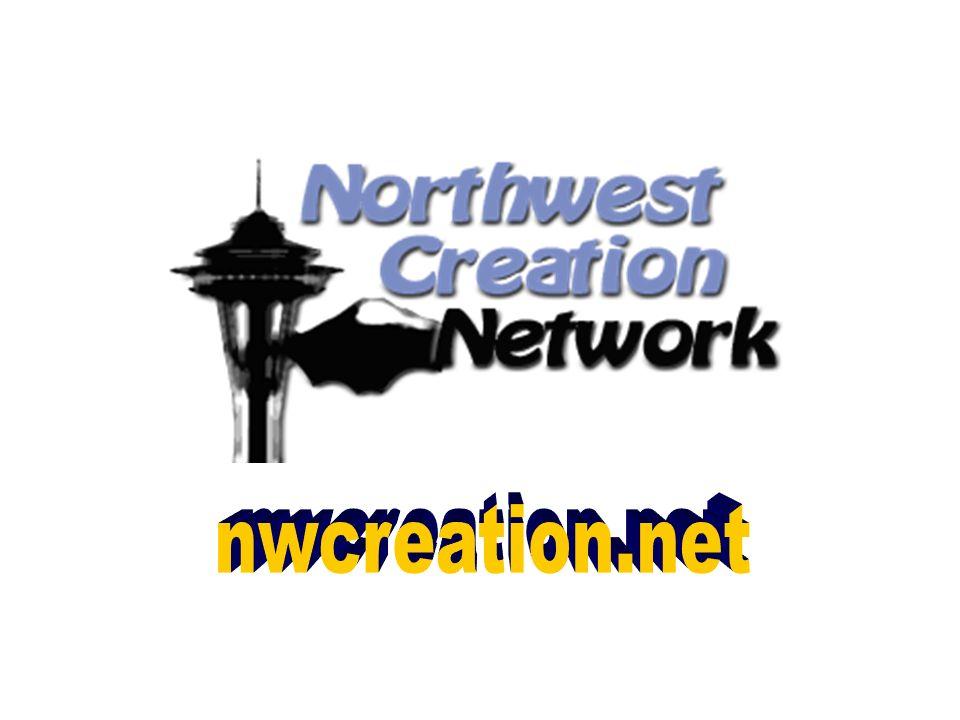 nwcreation.net