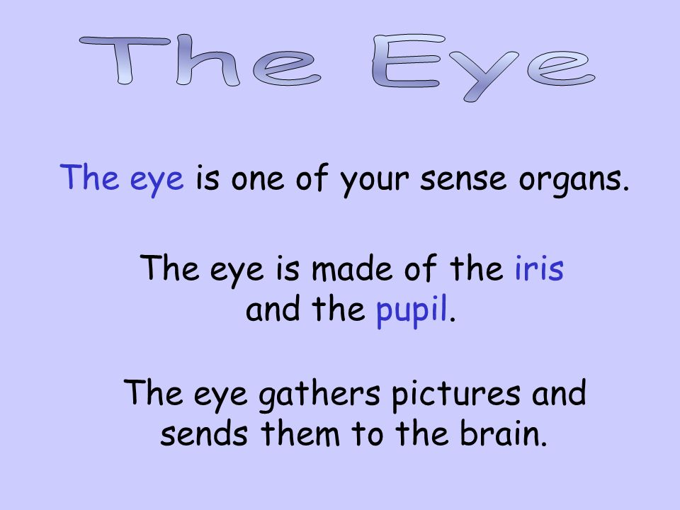 The eye is one of your sense organs.