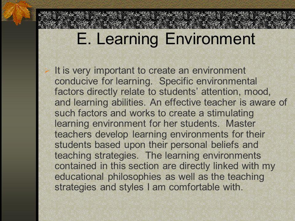 E. Learning Environment