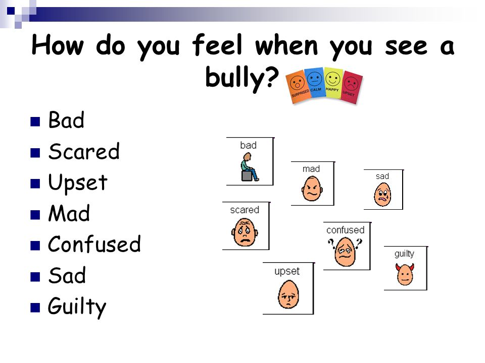 How do you feel when you see a bully