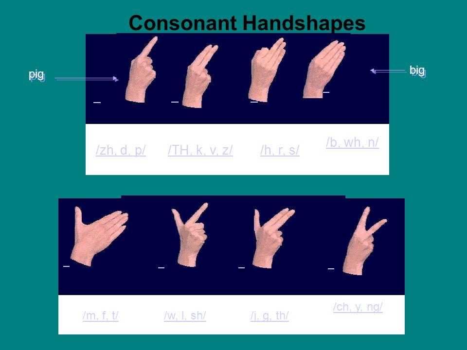 Consonant Handshapes /zh, d, p/ /TH, k, v, z/ /h, r, s/ /b, wh, n/ big