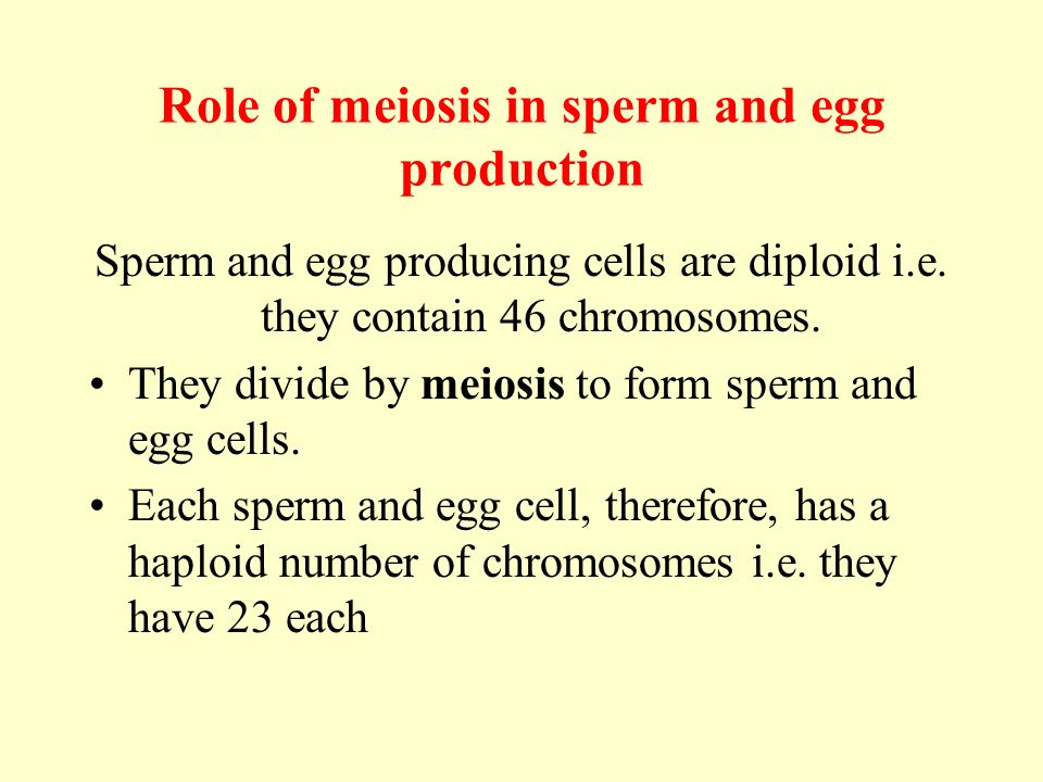 Sexual Reproduction in the Human - ppt download