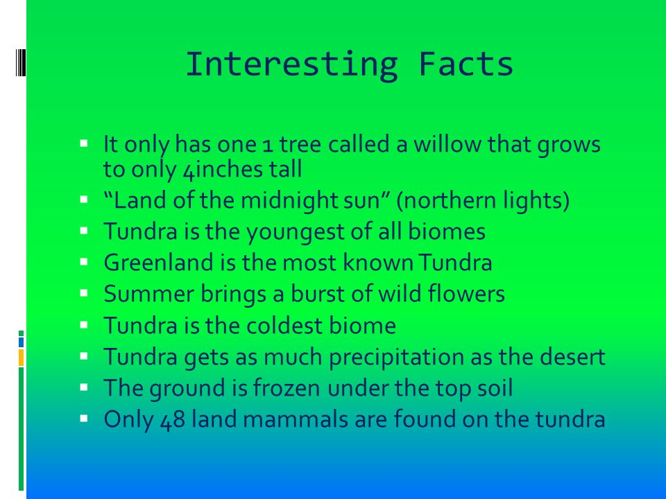 The arctic tundra nuuk greenland ppt video online download for All about soil facts