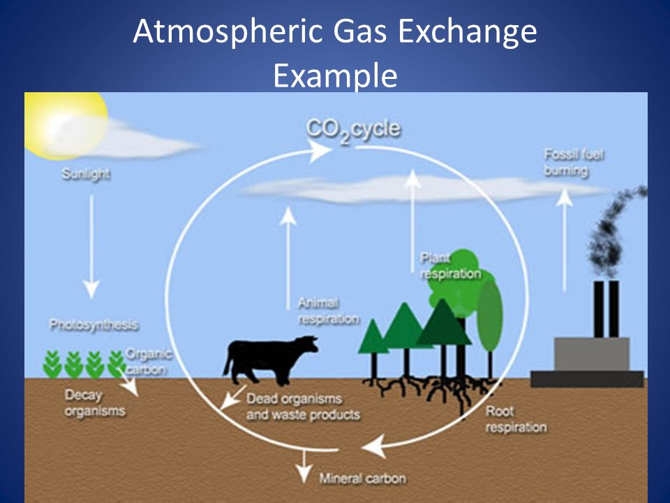 Atmospheric Gas Exchange Example