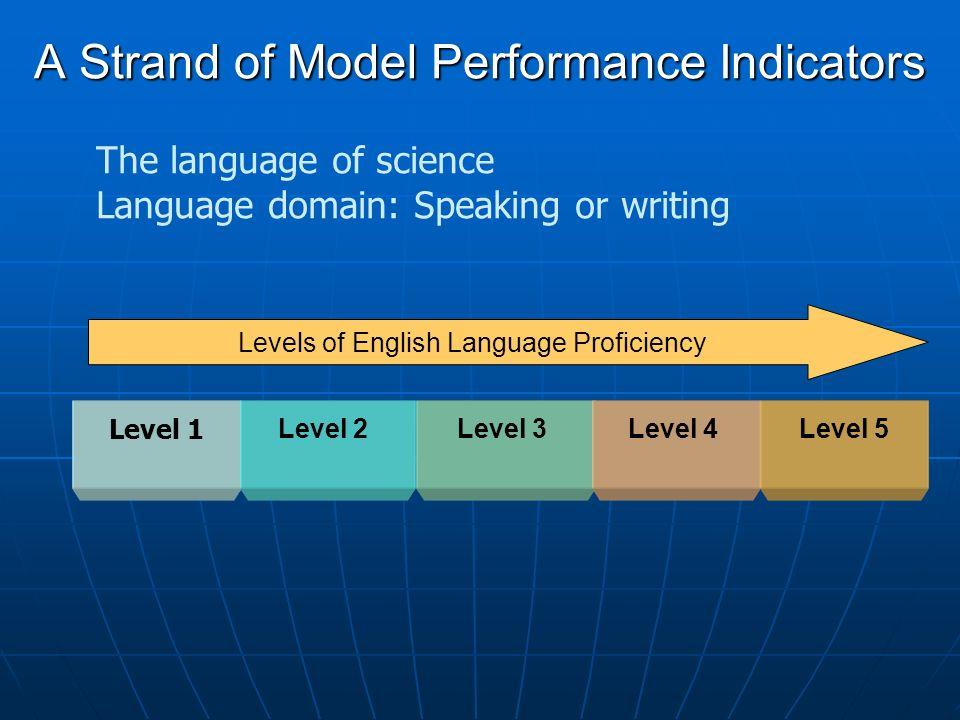 A Strand of Model Performance Indicators