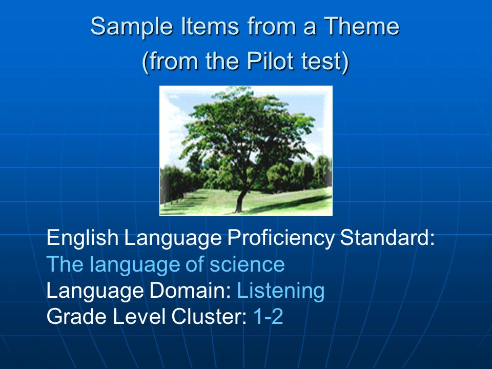 Sample Items from a Theme (from the Pilot test)