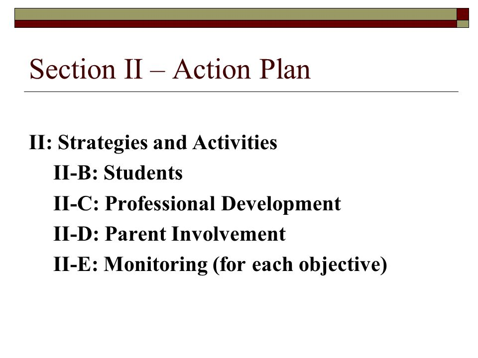 Section II – Action Plan