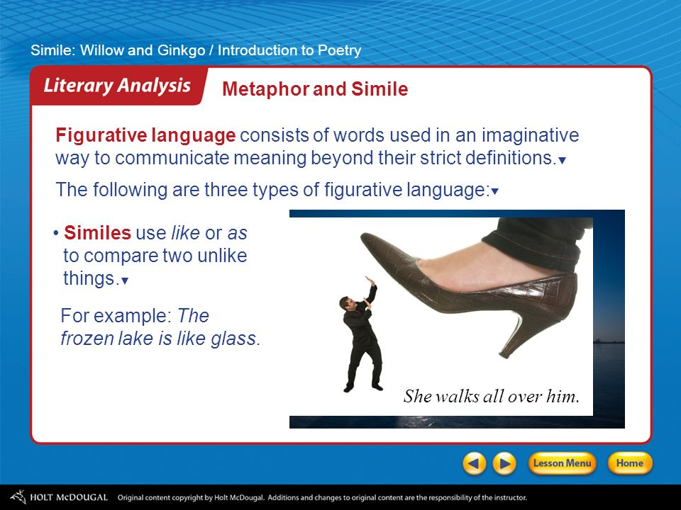 a literary analysis of a metaphor Start studying literary analysis terms learn vocabulary, terms, and more with flashcards, games, and other study tools.