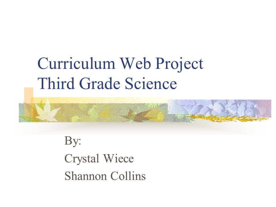 Curriculum Web Project Third Grade Science