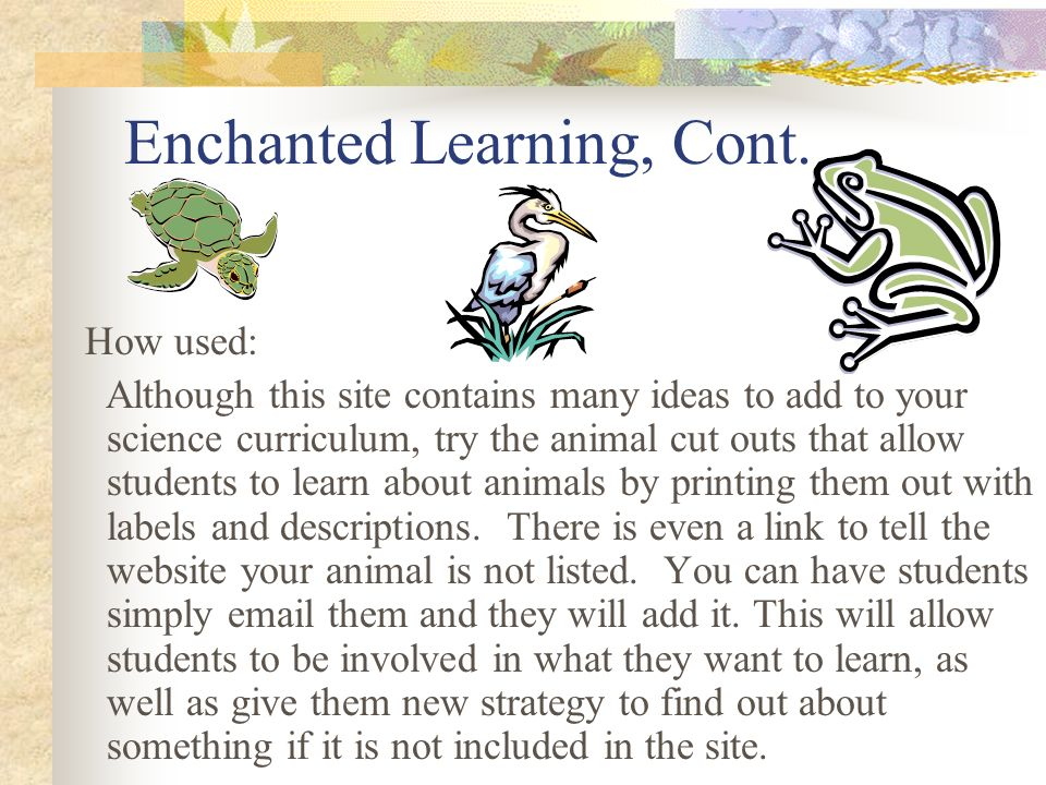 Enchanted Learning, Cont.