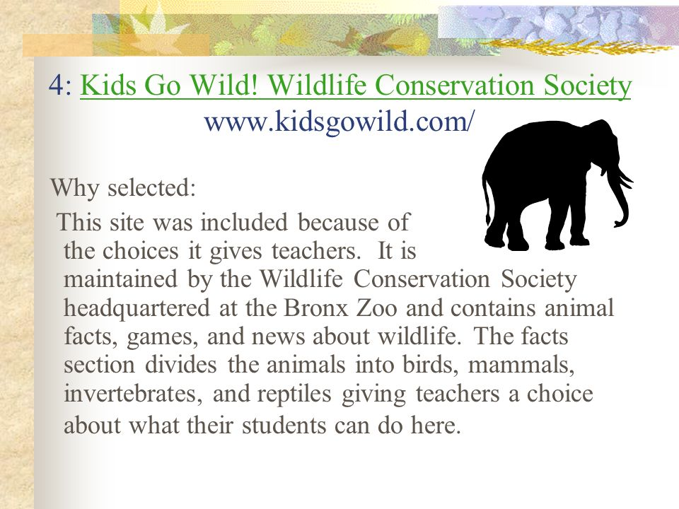 4: Kids Go Wild! Wildlife Conservation Society